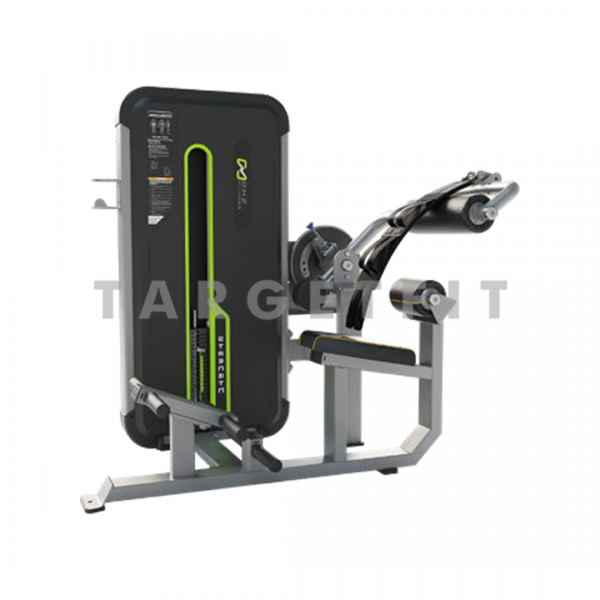 DHZ Abdominal and Back Extension Machine E3088
